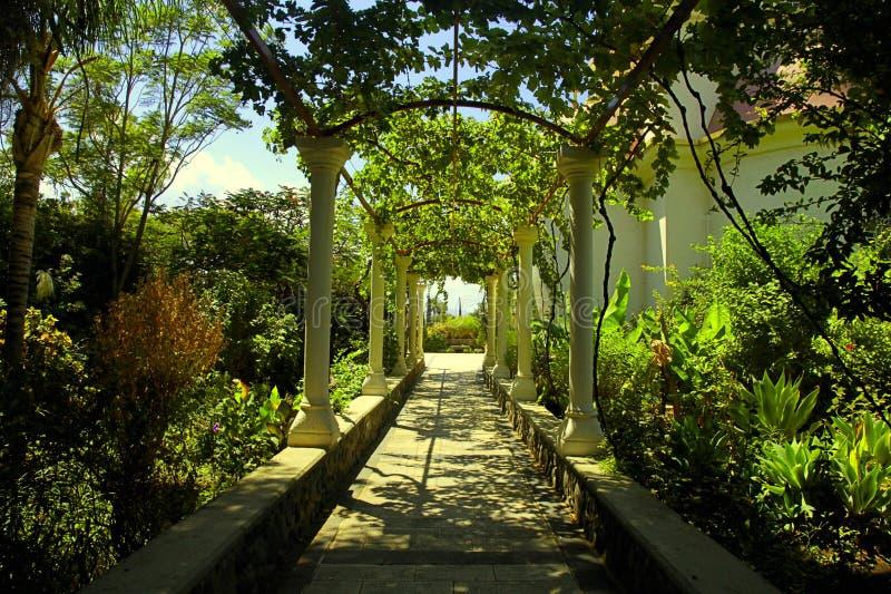 Bello passaggio della pergola nel giardino di estate fotografie stock libere da diritti