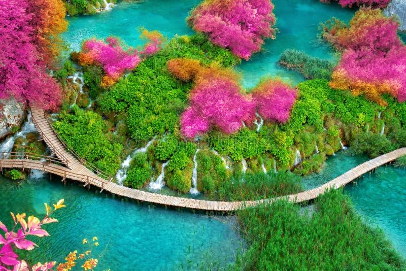 Bello percorso di legno nel lago Plitvice, Croazia fotografia stock