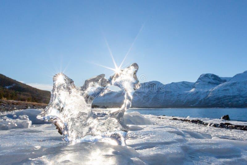 Bello pezzo di ghiaccio sulla riva del fiordo fotografia stock