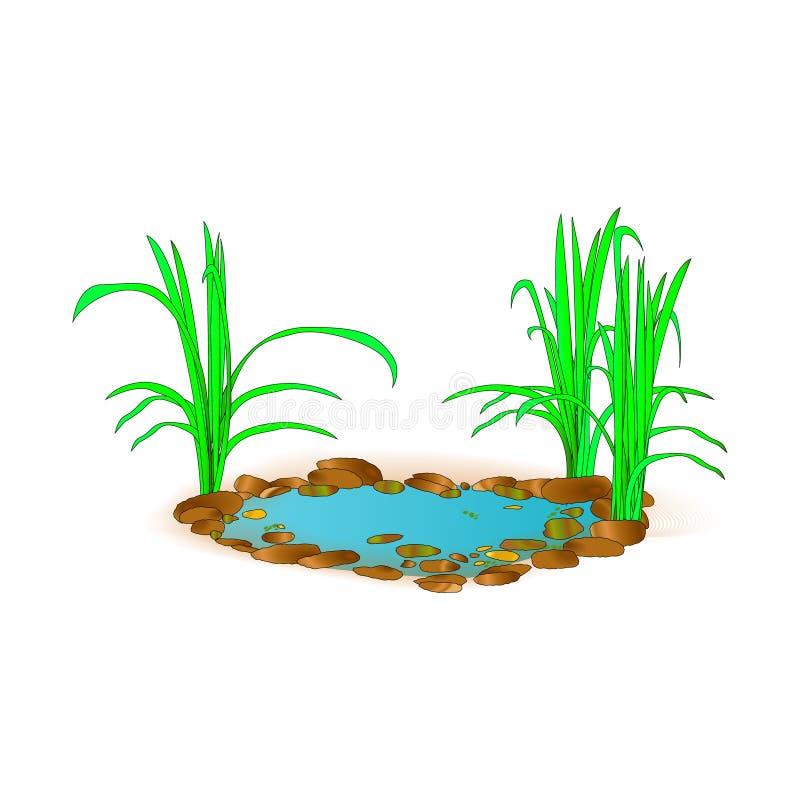 Bello piccolo lago con erba Per progettazione e stampa del paesaggio Paesaggio verde nel lago Priorità bassa della natura Illust  illustrazione di stock