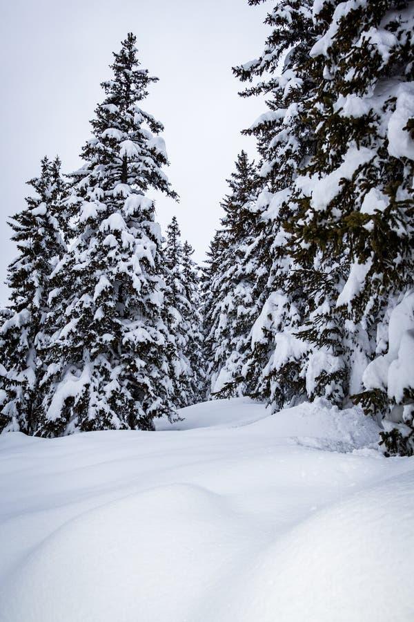 Bello posto nelle alpi immagini stock libere da diritti