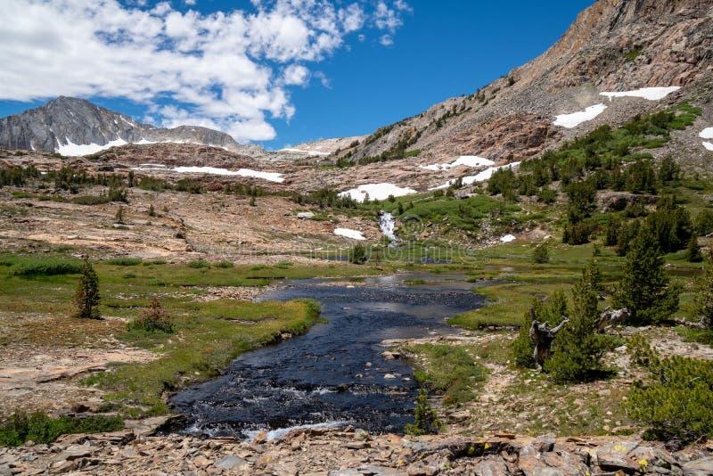 Bello prato con una corrente, una cascata e una neve di estate in montagne di California fotografia stock libera da diritti