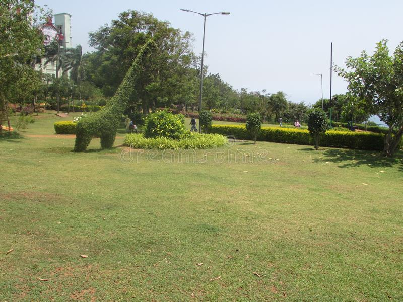 Bello prato inglese del giardino pubblico con la giraffa fatta in albero & l'arbusto che guarda molto bello fotografia stock