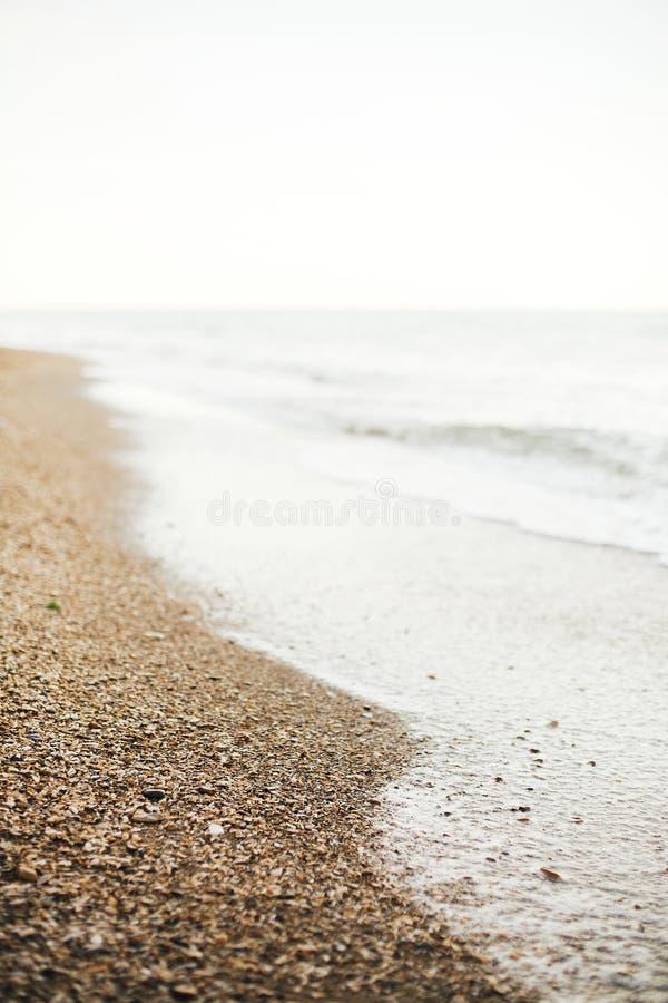 Bello primo piano della schiuma delle onde del mare e spiaggia sabbiosa con le conchiglie sull'isola tropicale Onde nella baia o  fotografia stock