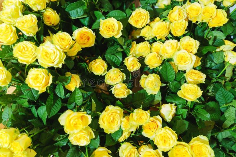 Bello primo piano festivo del mazzo Mazzo luminoso con le rose gialle come regalo fotografie stock