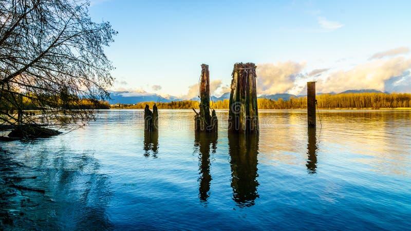 Bello punto di vista di Fraser River vigoroso in Columbia Britannica, Canada fotografia stock libera da diritti