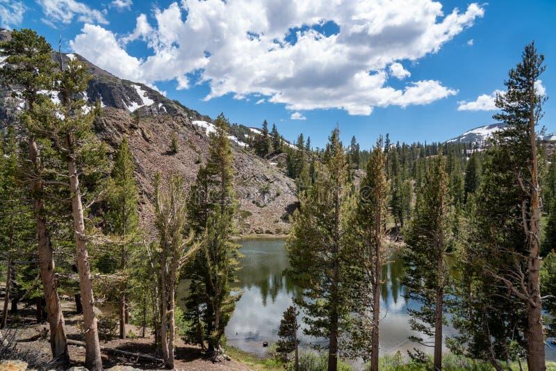 Bello punto di vista di Ellery Lake lungo il passaggio di Tioga in California un giorno di estate immagini stock