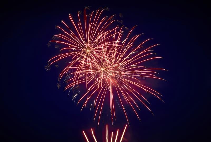 Bello saluto festivo nel cielo notturno, rosso fotografia stock libera da diritti