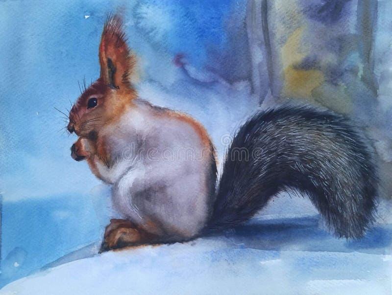 Bello scoiattolo nella neve immagine stock