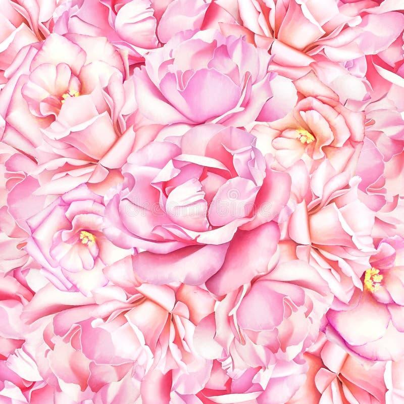 Bello sfondo naturale dell'acquerello con le rose rosa fotografia stock