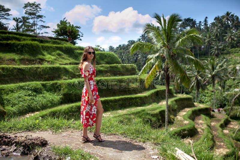 Bello sorriso della giovane donna in vestito rosso fra i terrazzi verdi del riso nel giorno soleggiato Corsa turismo festa immagini stock libere da diritti