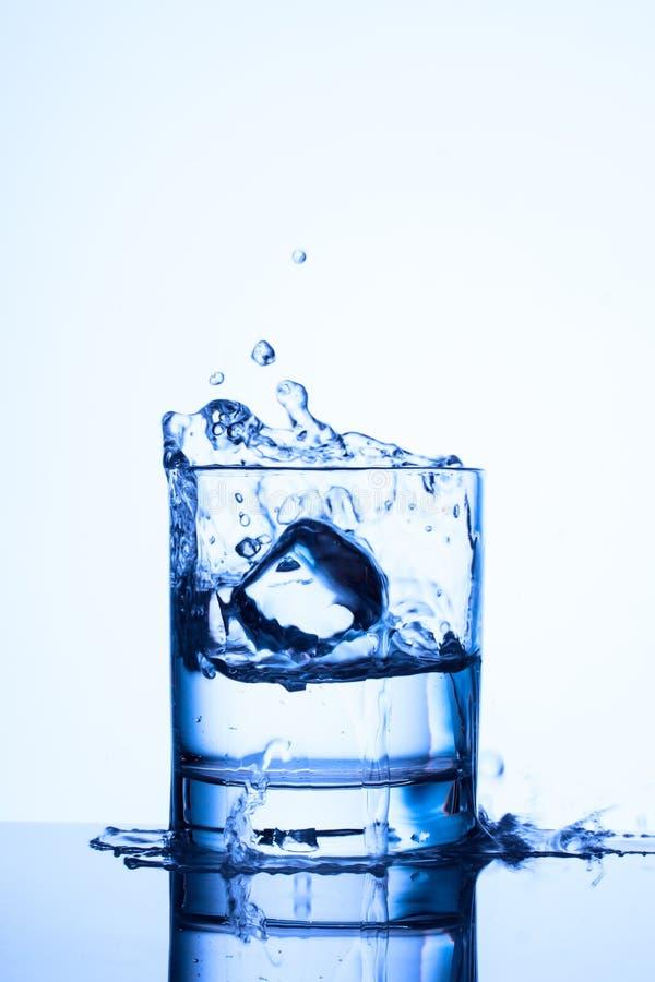Bello spruzza in un vetro con acqua immagine stock