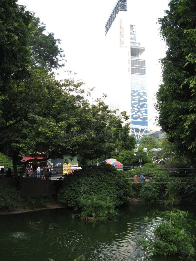 Bello stagno di pesce nel parco di Kowloon, Hong Kong fotografia stock