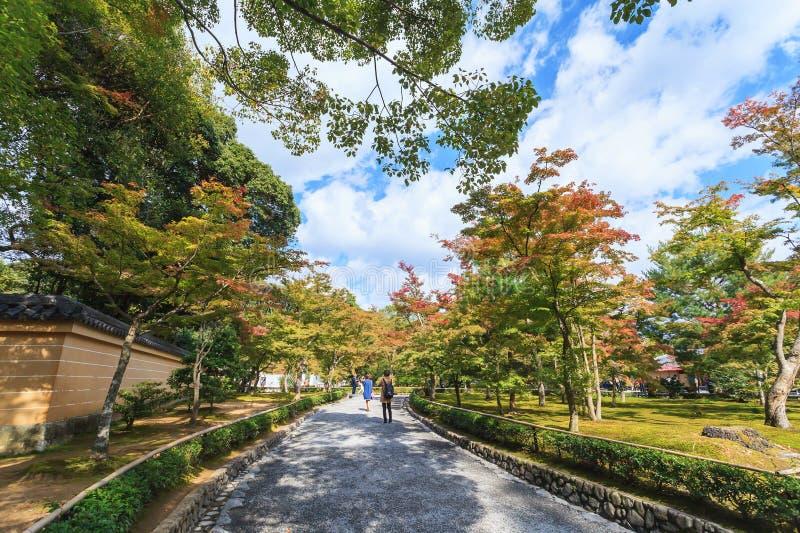 Bello stile giapponese del giardino di autunno in tempio dorato di Kinkakuji del padiglione a Kyoto fotografie stock libere da diritti