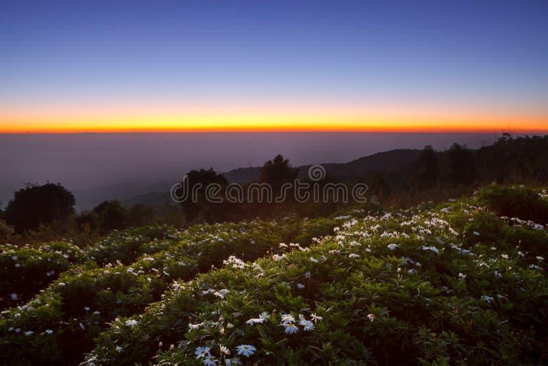 Bello tempo crepuscolare Alba di Morring a Huai Nam Dang Nationa immagine stock
