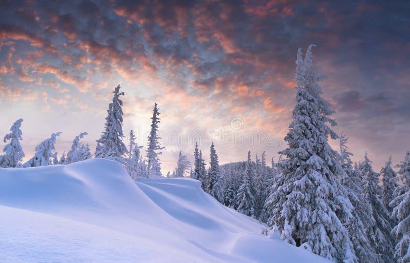 Bello tramonto di inverno fotografia stock