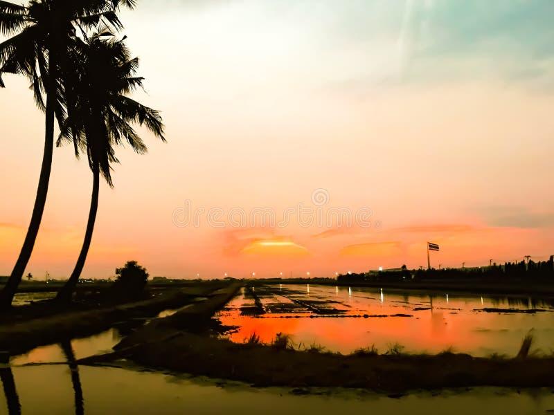 Bello tramonto in natura fotografie stock