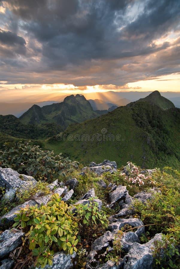 Bello tramonto nelle montagne a Doi Luang Chiang Dao fotografia stock libera da diritti
