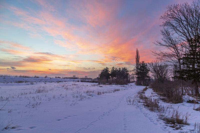 Bello tramonto rosa con neve in Erzurum immagine stock