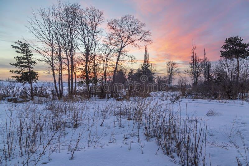 Bello tramonto rosa con neve in Erzurum fotografia stock libera da diritti