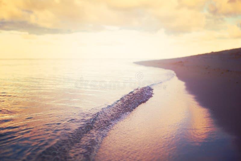 Bello tramonto sopra fondo d'annata di stile delle Maldive dell'isola dell'oceano il retro immagini stock