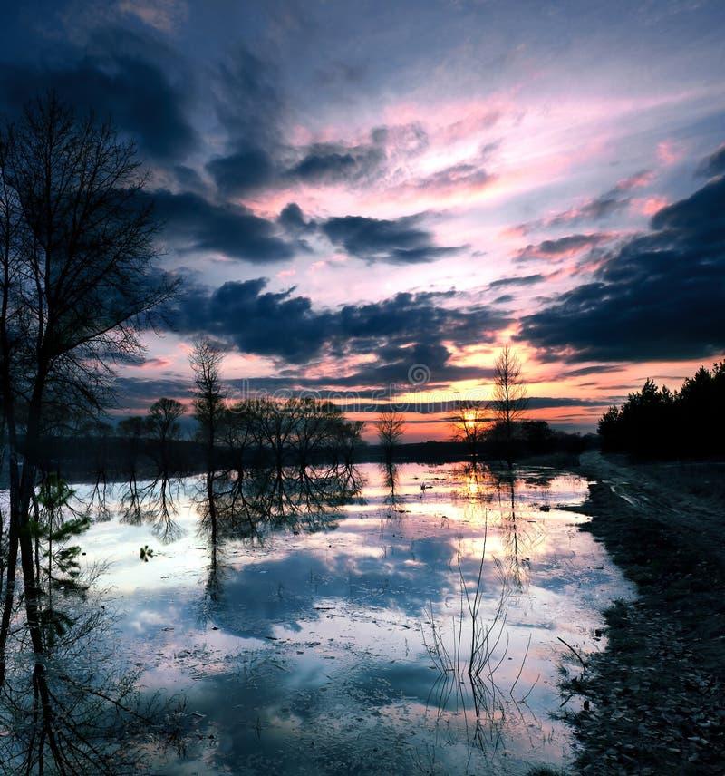 Bello tramonto sul lago in primavera fotografie stock