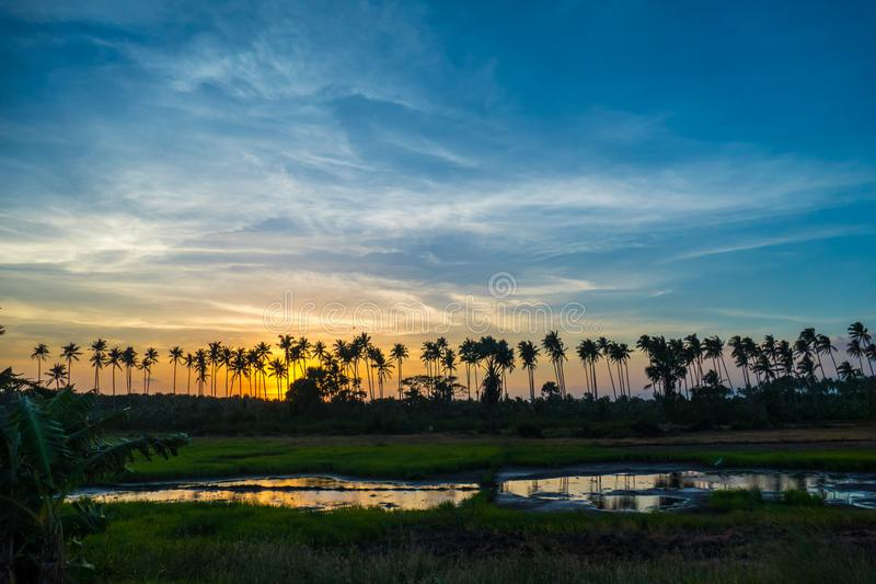 Bello tramonto variopinto sopra le palme fotografie stock libere da diritti