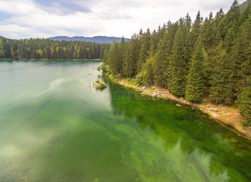 Bello turchese Forest Lake At Summer fotografie stock libere da diritti