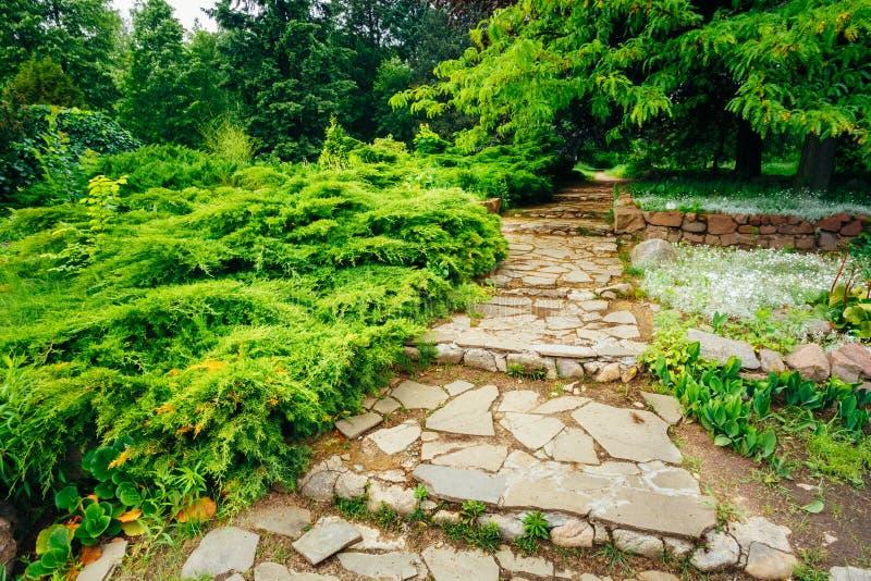 Bello vicolo in parco Progettazione d'abbellimento del giardino fotografie stock