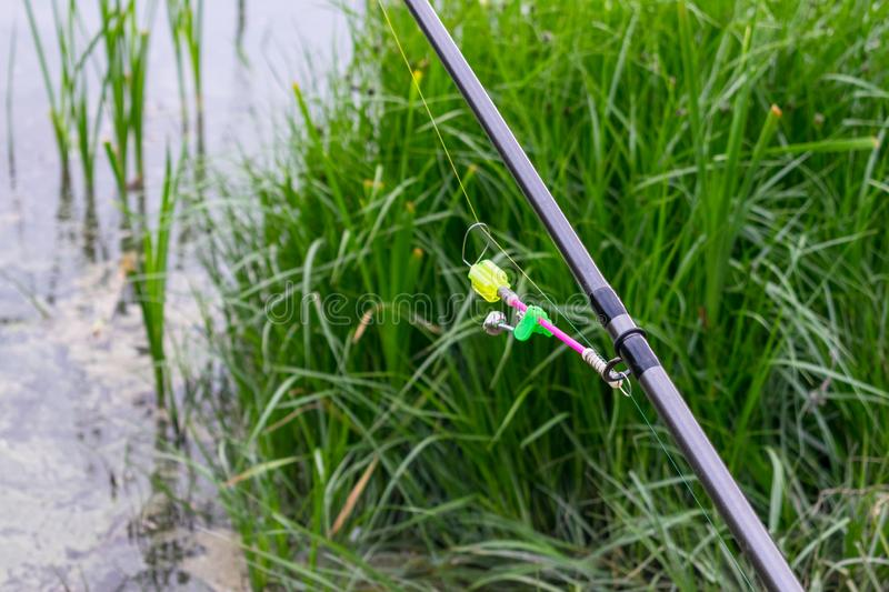 Bells for fish bites on fishing rod against background of green royalty free stock photos