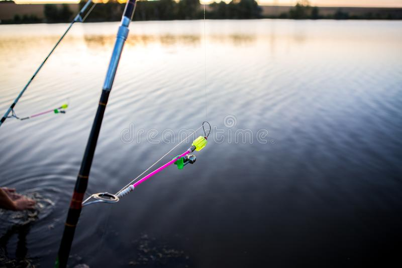 Bells for fish bites on fishing rod against background of lake. Bite alarm. Feeder carp fishing. stock photo