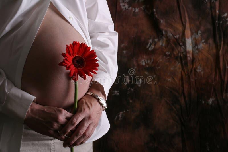 Download Belly2 grávido imagem de stock. Imagem de esperar, vermelho - 54515