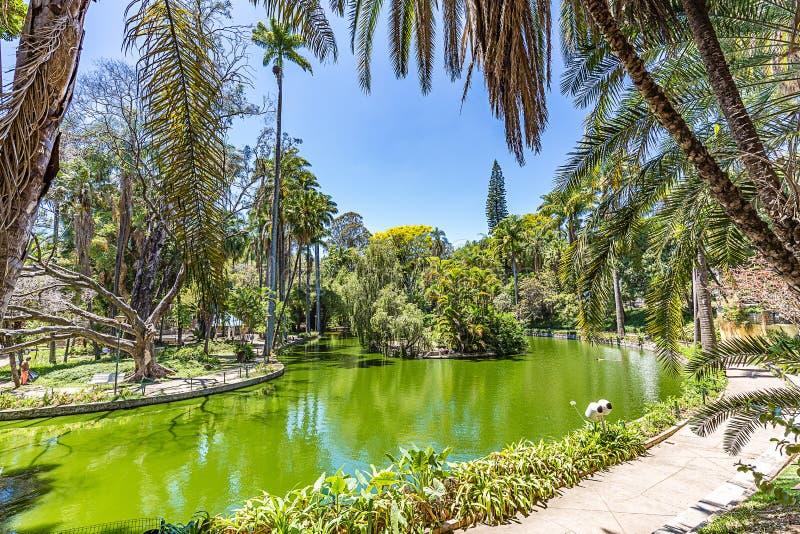 Belo Horizonte, Minas Gerais, Brésil Vue de parc municipal photo stock