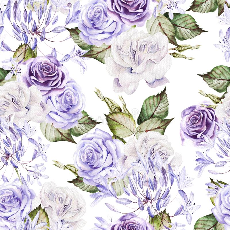 Belo padrão uniforme de aquarela com rosas brancas e roxas, bud ilustração stock