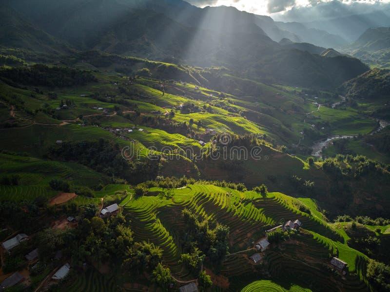 Belo passo do campo de pás de arroz no pôr do sol e amanhecer em Trung Khanh, Cao Bang foto de stock