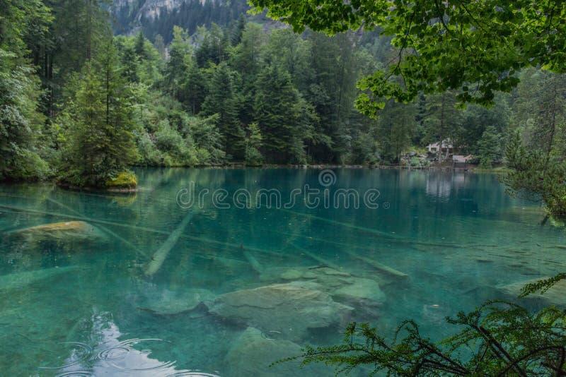 Belo tour de exploração pelas montanhas na Suíça - Blausee/Suíça foto de stock