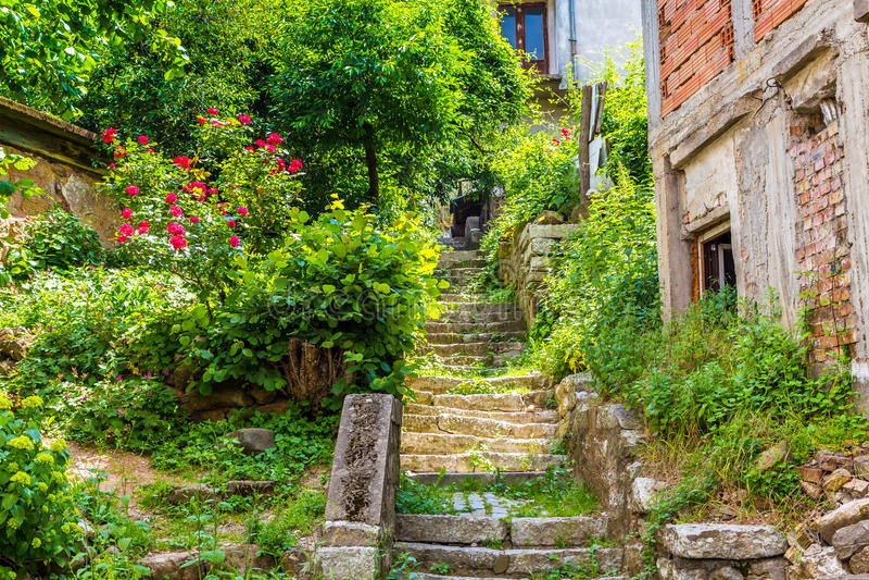 Belogradchik Bulgarienstadlandskap med den gamla trappuppgången och blommor fotografering för bildbyråer