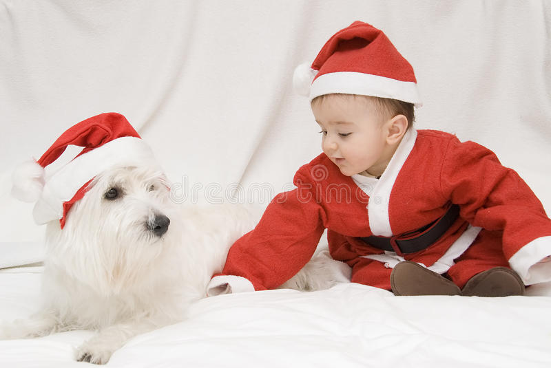 Download Beloved Christmas. stock photo. Image of cute, celebration - 16286956