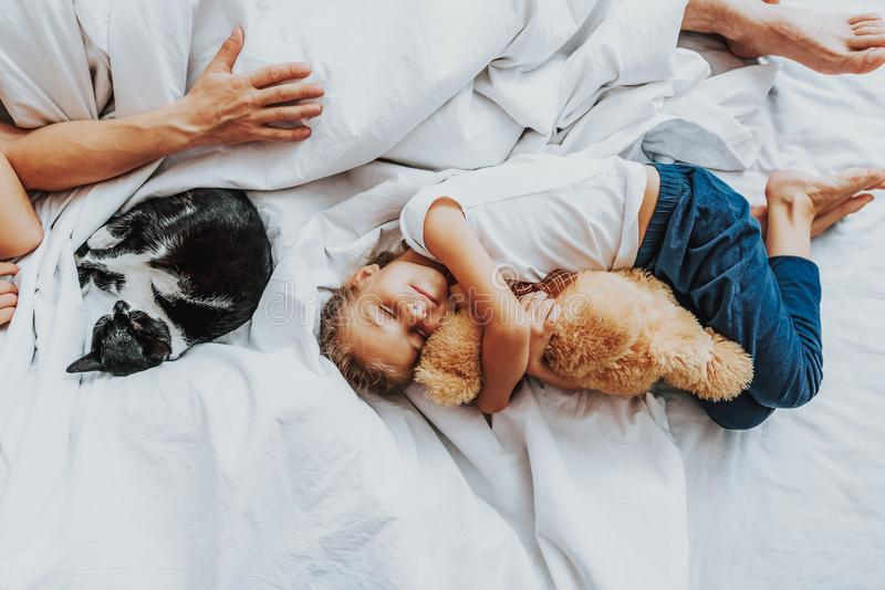Little girl sleeping with teddy bear in parents bed royalty free stock photography