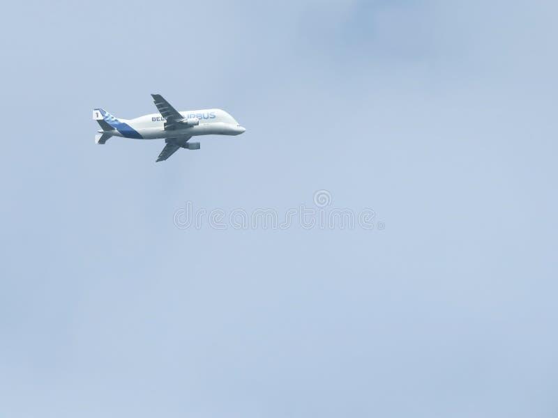 Beluga eccellente 1 del trasportatore di Airbus Areoplane di trasporto del carico oversize immagine stock