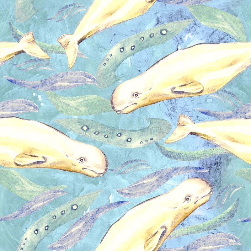 Belugas, hand painted watercolor illustration, seamless pattern on blue ocean surface with waves. Background royalty free illustration
