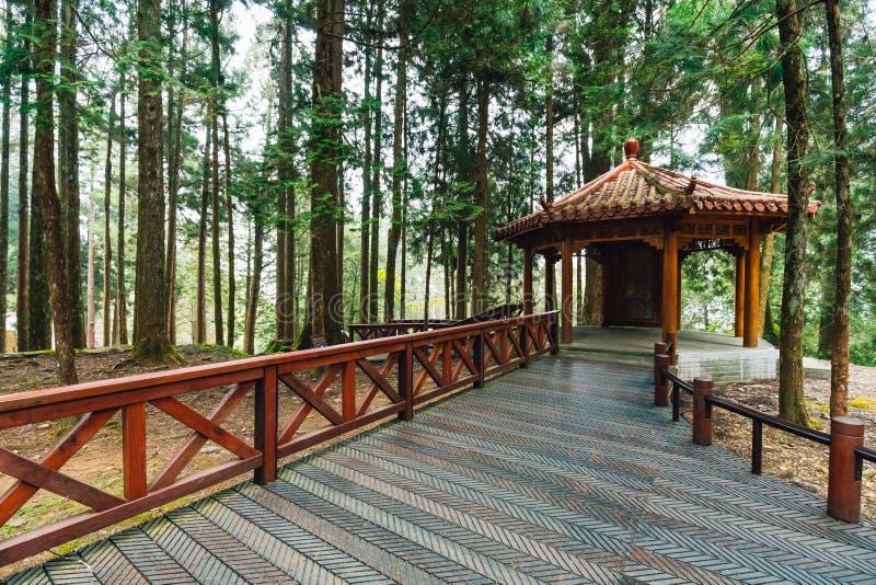Belvédère chinois avec des arbres de cèdre japonais dans la forêt dans Alishan Forest Recreation Area national dans le comté de C image libre de droits