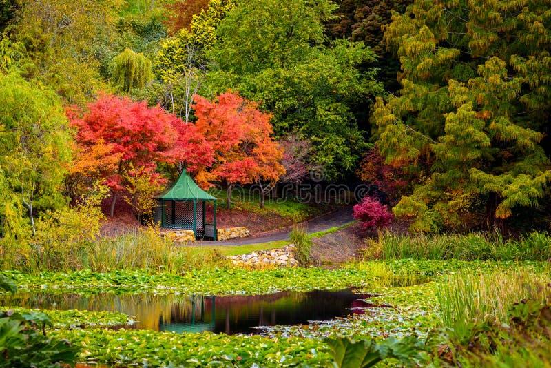 Belvédère en parc d'automne par l'étang photo stock