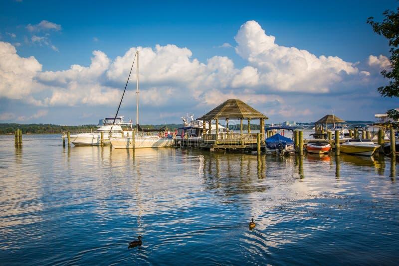 Belvédère et bateaux sur le fleuve Potomac, à l'Alexandrie, la Virginie image libre de droits