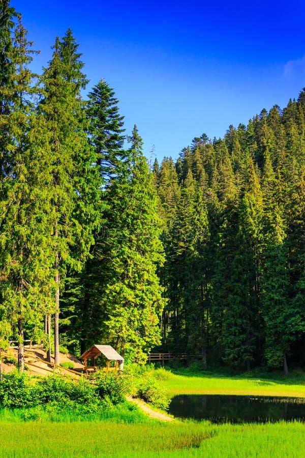 Belvédère et un petit lac à côté de la forêt dans les montagnes dans c images stock