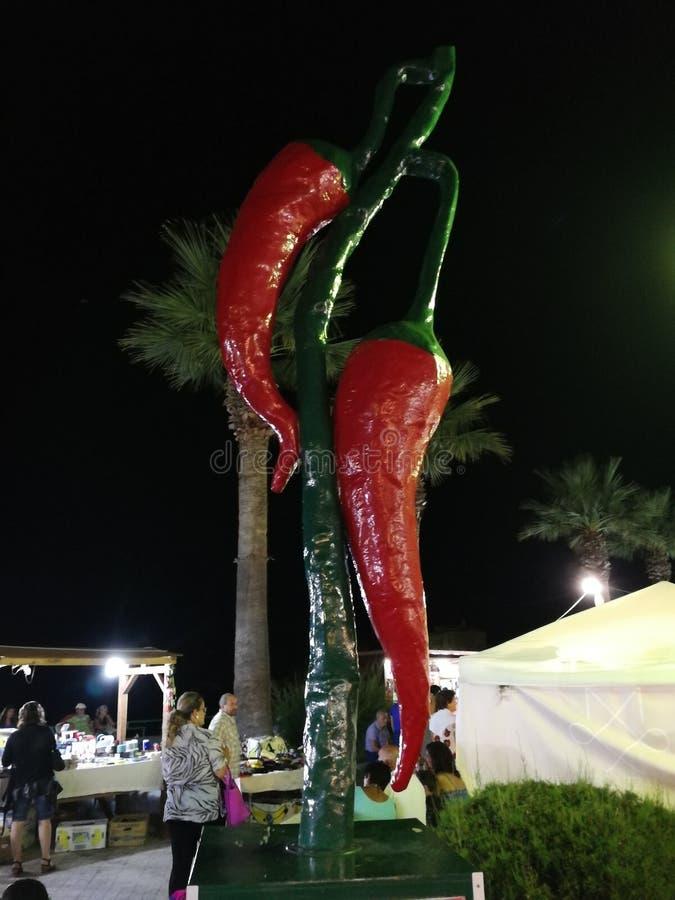Belvédère Marittimo - Peperoncini sur le bord de mer photo libre de droits