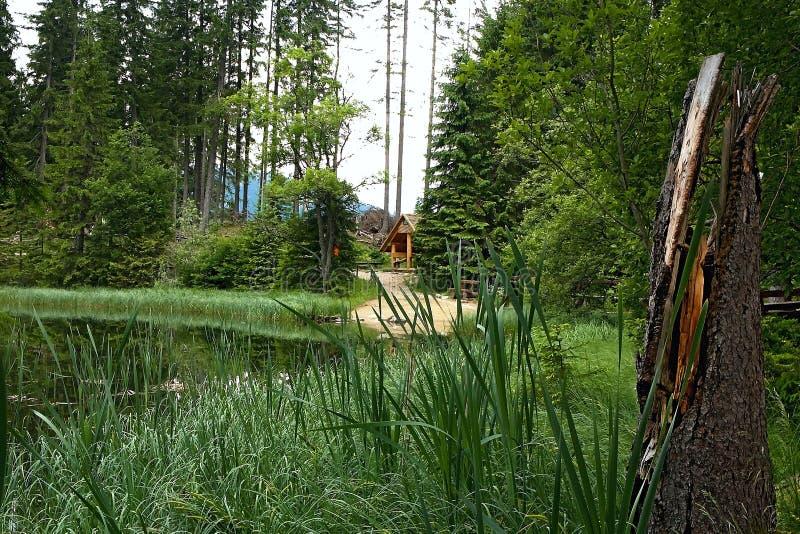 Belvédère traditionnel directement au lac Vrbice en vallée de Demanovska photos stock