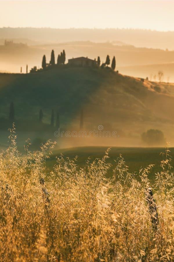 belvedere Тоскана стоковые изображения rf