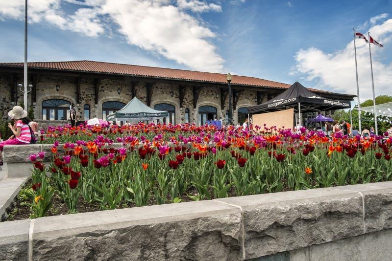Belvedere di Kondiaronk fotografia stock libera da diritti