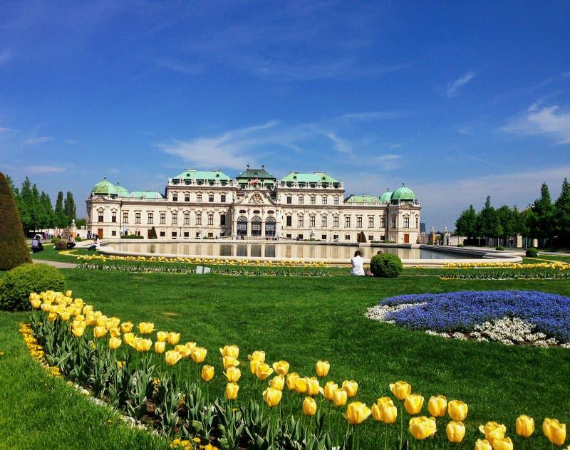 Belvederen Wien arkivbild